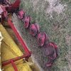 Under Auction (A129) - Lely 5 Disc Mower - 2% + GST Buyers Premium On All Lots