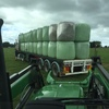 Silage  Freshly baled Quality Rye / Clover / Medic Mix.