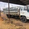 1988 Isuzu FSR11 Truck with stock crate