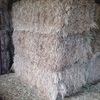800 x  8x4x3 Bales of Cereal Hay