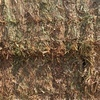8x4x3 vetch hay