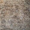 Wheaten Straw Windrowed  8x4x3  980 x 475 KG Approx Bales. Shedded