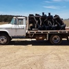 Dodge 400 Tray Truck