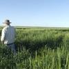 WIWO Farming Oportunity on the Qld-NSW Border