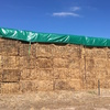 8x4x3 Vetch Hay Approx 100 MT. PRICE REDUCED