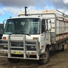 Nissan UD 6 Speed, Turbo CLG88, 28ft Tray with Cattle Crate, 1994 MDL