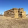 Wheaten hay 2016 crop
