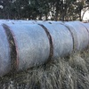 Oaten Hay Rolls For Sale