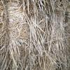 Wheaten & Rye 85/15% Hay - 3,000 x 530 KG Approx  Bales