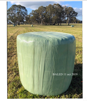 142 bales lucerne silage 300/t 660kg bales