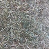 New Season Rye Clover Hay 8x4x3 Bales Shedded
