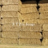 Wanted 100 m/t Cereal Hay @ $160+ G Locally