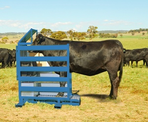 Ag Tech Sunday - Remote, portable system can 'weigh' Cattle while unattended