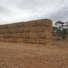 20 x wheaten straw header trailed 8x4x3 bales