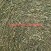 100 Lucerne Oats & Rye Grass Rolls