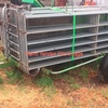 Wanted 22-30 Panel Portable Sheep Yards ##Urgent##