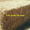 150MT Wheaten / Rye Hay for sale in 8x4x3's Feed Tested, 590Kgs Average -  Can Freight Good Quote!! Shedded