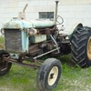 Fordson Major Tractor's For Sale x 2