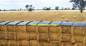 Windrow irrigation wheat straw