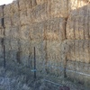 417 Bales of Old Season Vetch Hay