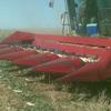 "International corn front 6 row x 40"" Metre"