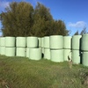 52 bales Wheatern silage