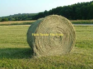 Wanted Rye/Clover Round Bales