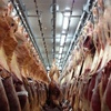 Aussie Beef sent to China by airplane