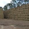 Wheaten Hay in 8x4x3 Bales