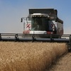 Russian export taxes a bonanza for Australian farmers…