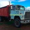 Bogie Drive or Lazy Axle Rigid Tray Top Tipper Truck Wanted