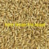 40 Tonne - Triticale Ex Farm - New Season