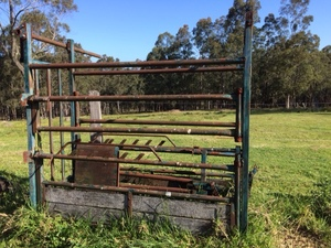 Cattle Crush Walk Through