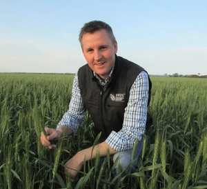 GRDC's announces its new five-year Hyper Yielding Crops initiative