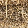 O/S Vetch Hay for Sale in 8x4x3's - Must sell - No tops - 480Kgs