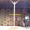 200 Rye Grass Rolls - Current Season