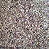 Lentil and Barley Mix