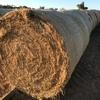Good Lucerne Hay Rolls For Sale Ex Farm 1st & 2nd Cut - Same Quality