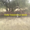 642 Napier Grasslands Wideline Cultivator or Similar Wanted