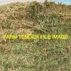 500mt Oaten Hay for Sale in 8x4x3's