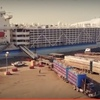 Video - Loading Sheep on a ship at Fremantle