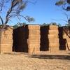 Vetch Hay 8x4x3 - 140 x 640 KG Approx Bales