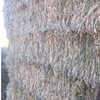 Oaten Hay 8x4x3 - 500 x 570 KG Approx Bales ## Delivered Price Wagga Wagga Area ##