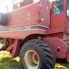 International 1460 harvester