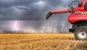 Grain Report - East coast Harvest delays appear inevitable…
