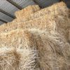 Small Pasture Hay sqares