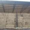 Clover Hay ( Sarva Snail Clover ) 8x4x3  500 x 600 KG Approlx Bales & Shedded