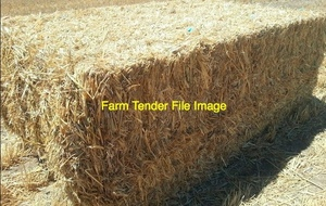 Upto 400/mt Good N/S Wheaten or Barley Hay Wanted off the Baler in Central & Northern Vic