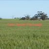 25 acres Irrigation Property for sale