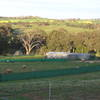30 Acres - Lifestyle living close to town - COOTAMUNDRA - Price on Application